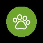 L'aloe vera pour les animaux